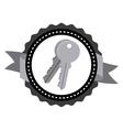 keys icon design vector image