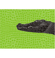 Pattern crocodile background vector image