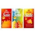 Shiny Autumn Leaves Sale Banner Template Set vector image
