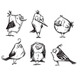 Funny cartoon birds hand drawn vector image vector image