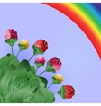 Flowers and rainbow Spring bright background vector image