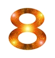 Number of orange firework eight vector image