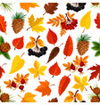 Seamless autumn pattern background of fall nature vector image