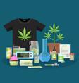 marijuana and smoking equipment flat icons vector image