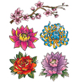 Tattoo Flower Set vector image