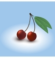 Two ripe cherry with leaves and dewdrops vector image