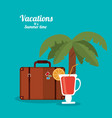 vacations summer time - cocktail suitcase and palm vector image