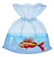 A plastic pouch with a fish vector image