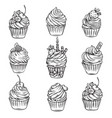 hand drawn cupcakes vector image