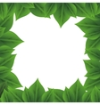leaves pattern icon image vector image