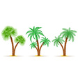 palm tree 08 vector image vector image