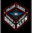 brooklyn urban sport vector image