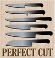 Perfect Cut vector image