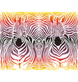 Zebra abstract pattern background vector image vector image
