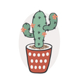 Cactus with flowers vector image