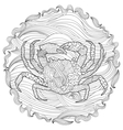 Sea crab with high details vector image