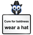 SIGN BALDNESS vector image vector image