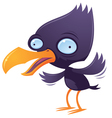 wacky squawking bird vector image vector image