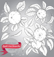 Clip art collection of hand drawn apple branches vector image
