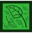 Effective Green Leaves Card In Frame vector image