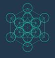 metatrons cube flower of life sacred geometric vector image