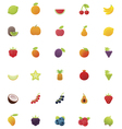 Fruits icon set vector image