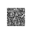 zebra square texture fabric style for tattoo vector image