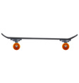 Skateboard with an orange roller vector image