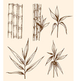 Set of hand drawn vintage bamboo vector image