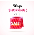 Cartoon shopping bag sale vector image