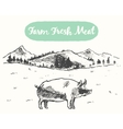Drawn pig meadow farm fresh products sketch vector image
