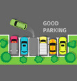 good parking car parked in appropriate way vector image