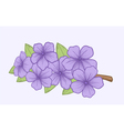 Beautiful blooming branch a symbol of spring vector image