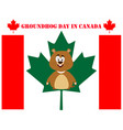 groundhog day in canada vector image