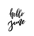 hello june brush lettering vector image