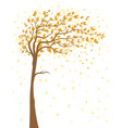 tree with falling leaves vector image