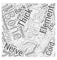 Back Pain and Diagnosis Word Cloud Concept vector image