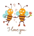 Bees couple vector image