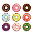different donuts in cartoon style vector image