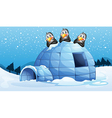 Three penguins above the igloo vector image