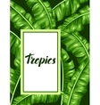 Frame with banana leaves Image of decorative vector image