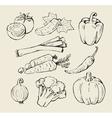 black vegetables vector image