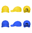 Yellow and Blue Caps vector image