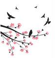spring sakura blossom vector image vector image