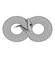 ornamental Snake ethnic zentangled vector image