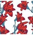 Elegant lilly flowers pattern vector image