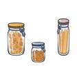 glass jar with swing top lid set sketch vector image