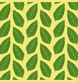 pattern color set decorative of green leaves plant vector image