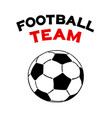 soccer ball icon isolated flat vector image