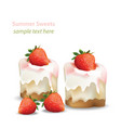 summer sweet cheesecake with strawberry fruits vector image